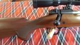 Winchester. Model 70 Sporter Varmint rifle - 3 of 14