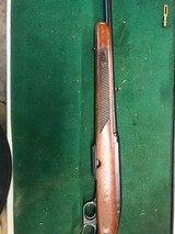 Winchester model 88 .243 Winchester