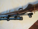 WINCHESTER MODEL 70.257 ROBERTS - 9 of 10