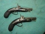 Pair of Ebony Stock Engraved Percussion Pocket Pistols