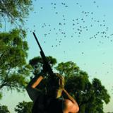 Help the Argentine Farmer…