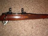 Colt Sauer 270 cal