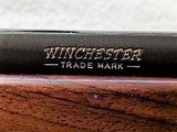 Winchester Model 70 Magnum (.375 H&H Mag) - 15 of 19
