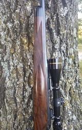 Winchester M70 .300 win Mag