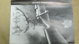 Mauser M03 .375 H&H Mag. - 17 of 20