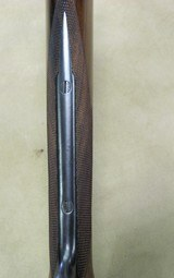 Cogswell & Harrison 12 Ga. Engraved Hammer Double Barrel - 16 of 20