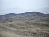 Idaho Hunting Ranch near Boise with Bird Hunting, Mule Deer and Elk hunting! Owner Financing!!! - 9 of 12