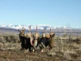 Idaho Hunting Ranch near Boise with Bird Hunting, Mule Deer and Elk hunting! Owner Financing!!! - 5 of 12