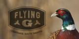 Flying G Pheasant Hunting