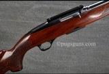 Winchester 100 284 Winchester