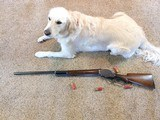 Winchester Model 1901 10 Gauge Lever Action Shotgun