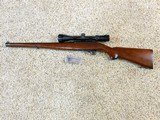 Ruger 10-22 Carbine With International Stock