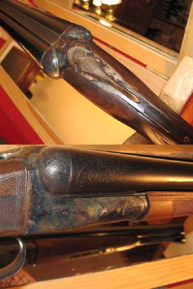 Fox CE Pigeon/Duck Gun Fully Restored - 2 of 8