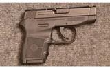 Smith & Wesson ~ Bodyguard ~ .380 ACP.