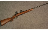 Browning ~ X-Bolt ~ .300 Winchester Magnum