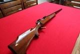 Remington model 700 varmint special, 22-250