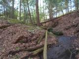 LAKE and HUNTING Property, NC Mountains, spring/stream, USFS Border. OWNER FINANCING - 13 of 15
