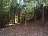 LAKE and HUNTING Property, NC Mountains, spring/stream, USFS Border. OWNER FINANCING - 14 of 15