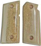 Colt Mustang or Colt Pocketlite Real Fossilized Walrus Ivory Grips