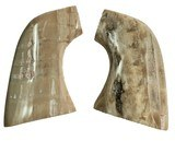 Colt SAA Oversize Real Fossilized Alaskan Walrus Ivory Grips
