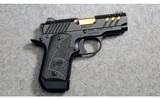Kimber ~ Micro 9 ESV ~ 9MM Luger