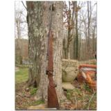 """Winchester, """"North American Game Series"""", complete set of 3 Model 70 custom rifles - 6 of 12"""