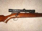 Win M43 .22 Hornet - 7 of 7