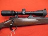 Kimber Model 84M 243 Win w/ Vortex Crossfire 3-9x40