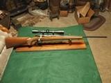Ruger Model 77 Hawkeye .243