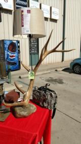 Deer Antler Lamp