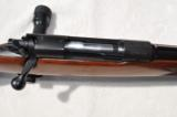 Winchester Model 70 Pre 64