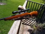 Remington 788 Collector Condition 22-250 Looks Like It Was Just Taken Out Of The Box - 5 of 11