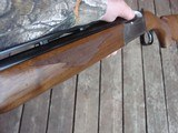 """Ruger 28 Ga Red Label Stainless Near New 26"""" Barrels - 10 of 18"""