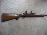 Ruger m77, .243 Win, Pre-Warning, Early Rifle - 1 of 6