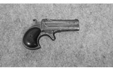 Remington~Deringer~41 Rimfire - 1 of 2