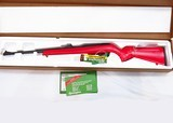 Ltd. Ed. Remington Model 597 Dale Earnhardt Jr .22 Rifle - 2 of 5