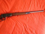 Winchester Special Order Model l894 in 25/35 caliber - 8 of 8