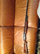 Winchester model 12 pidgeon - 1 of 5