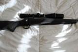 Remington 700 SPS in 204 Ruger - 5 of 6