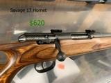 Savage 17 Hornet - 3 of 3