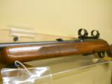 WINCHESTER 100 - 7 of 7