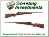 Browning Pronghorn 1 of 500 High Grade 243 looks new