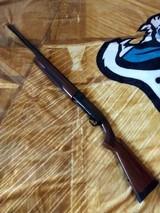 10 Gauge Browning semi auto BPS