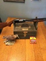 Winchester model 12. 20ga