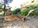 Red Stag & Fallow Buck combination hunt- 2 of 12