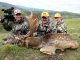 Red Stag & Fallow Buck combination hunt- 12 of 12