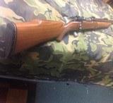custom Rifle, Mauser action in .243 Rockchucker