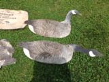 Johnson's Folding Goose Decoys