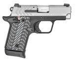 Springfield Armory 911 380 ACP Stainless Slide PG9109S