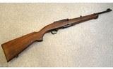 Winchester ~ Model 100 Carbine ~ .243 Winchester